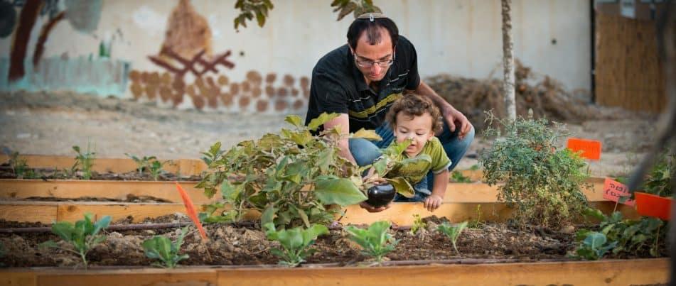 גינת חי: הכירו את הפרויקט הכי ירוק בעיירה הדרומית ירוחם